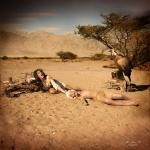 תערוכת ''אילוזיה אחרת ''צילום אילן סימן טוב