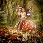 צילום צילומי ילדים ילדה עם פטריה וכנפיים של פרפר בוק פיה בוקים מיוחדים לילדים